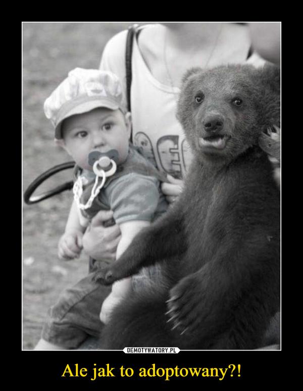 Ale jak to adoptowany?! –