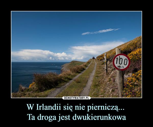 W Irlandii się nie pierniczą... Ta droga jest dwukierunkowa –  100 km/h