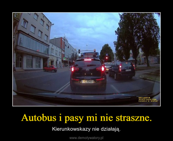 Autobus i pasy mi nie straszne. – Kierunkowskazy nie działają.