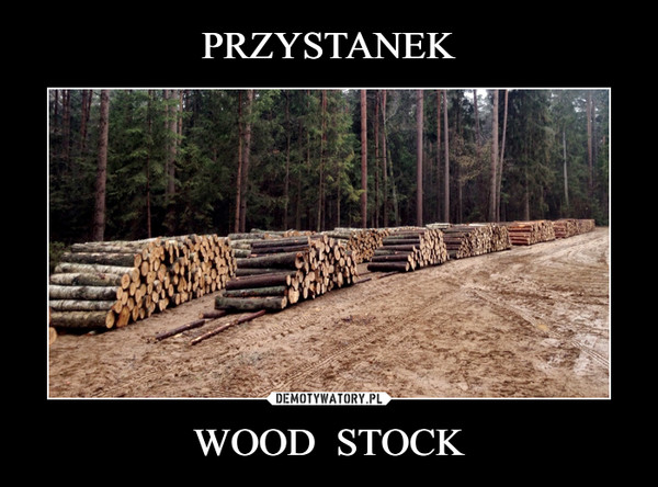 WOOD  STOCK –