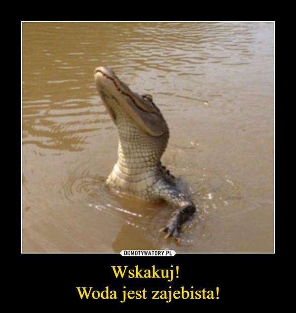 Wskakuj! Woda jest zajebista! –