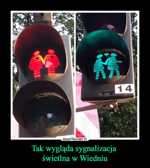 Tak wygląda sygnalizacja świetlna w Wiedniu –