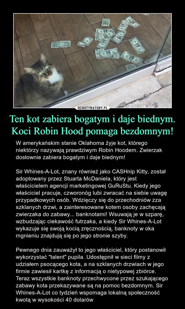 """Ten kot zabiera bogatym i daje biednym. Koci Robin Hood pomaga bezdomnym! – W amerykańskim stanie Oklahoma żyje kot, którego niektórzy nazywają prawdziwym Robin Hoodem. Zwierzak dosłownie zabiera bogatym i daje biednym! Sir Whines-A-Lot, znany również jako CASHnip Kitty, został adoptowany przez Stuarta McDaniela, który jest właścicielem agencji marketingowej GuRuStu. Kiedy jego właściciel pracuje, czworonóg lubi zwracać na siebie uwagę przypadkowych osób. Wdzięczy się do przechodniów zza szklanych drzwi, a zainteresowane kotem osoby zachęcają zwierzaka do zabawy... banknotami! Wsuwają je w szparę, wzbudzając ciekawość futrzaka, a kiedy Sir Whines-A-Lot wykazuje się swoją kocią zręcznością, banknoty w oka mgnieniu znajdują się po jego stronie szyby. Pewnego dnia zauważył to jego właściciel, który postanowił wykorzystać """"talent"""" pupila. Udostępnił w sieci filmy z udziałem psocącego kota, a na szklanych drzwiach w jego firmie zawiesił kartkę z informacją o nietypowej zbiórce. Teraz wszystkie banknoty przechwycone przez szukającego zabawy kota przekazywane są na pomoc bezdomnym. Sir Whines-A-Lot co tydzień wspomaga lokalną społeczność kwotą w wysokości 40 dolarów"""