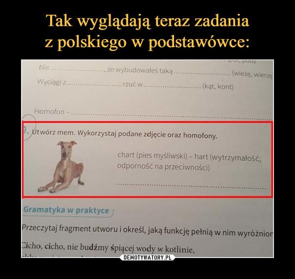 –  Utwórz mem. Wykorzystaj podane zdjęcie oraz homofony.chart (pies myśliwski) - hart (wytrzymałość, odporność i na przeciwności