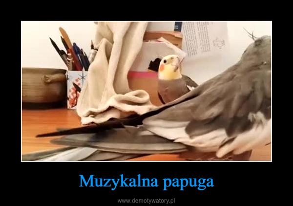 Muzykalna papuga –