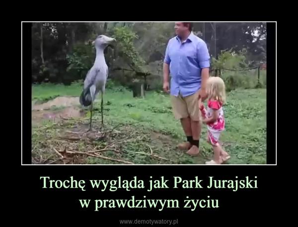 Trochę wygląda jak Park Jurajskiw prawdziwym życiu –