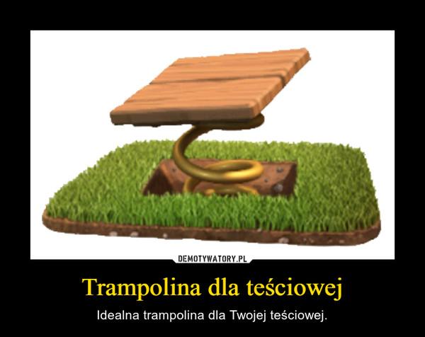 Trampolina dla teściowej – Idealna trampolina dla Twojej teściowej.