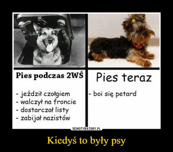 Kiedyś to były psy –