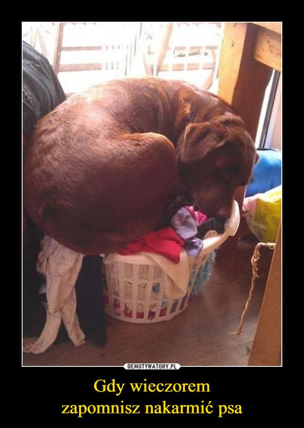 Gdy wieczoremzapomnisz nakarmić psa –