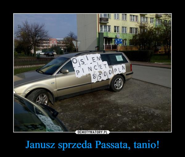 Janusz sprzeda Passata, tanio! –