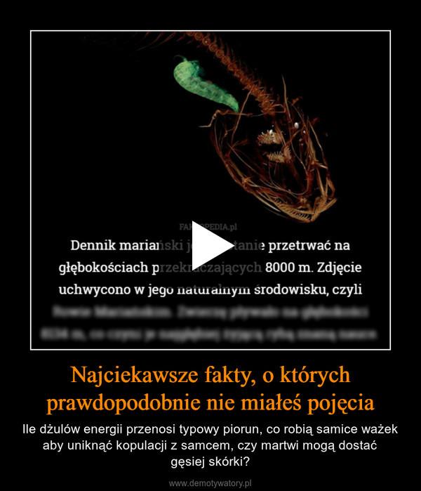 Najciekawsze fakty, o którychprawdopodobnie nie miałeś pojęcia – Ile dżulów energii przenosi typowy piorun, co robią samice ważek aby uniknąć kopulacji z samcem, czy martwi mogą dostaćgęsiej skórki?