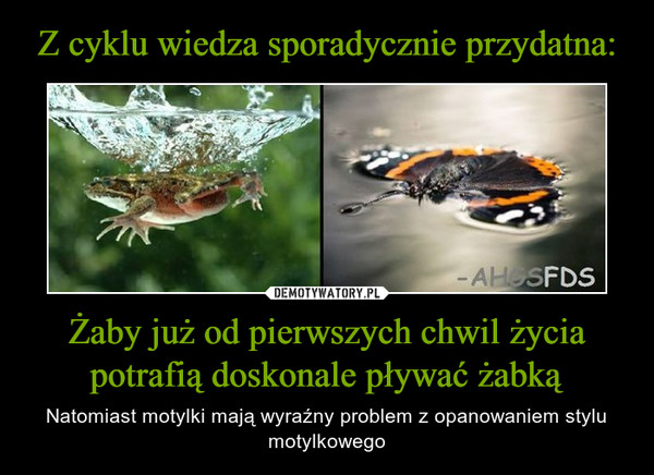 Żaby już od pierwszych chwil życia potrafią doskonale pływać żabką – Natomiast motylki mają wyraźny problem z opanowaniem stylu motylkowego