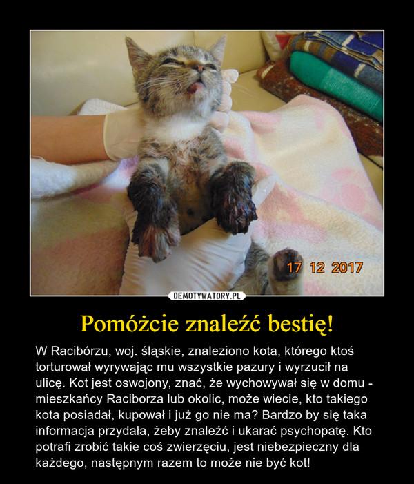 Pomóżcie znaleźć bestię! – W Racibórzu, woj. śląskie, znaleziono kota, którego ktoś torturował wyrywając mu wszystkie pazury i wyrzucił na ulicę. Kot jest oswojony, znać, że wychowywał się w domu - mieszkańcy Raciborza lub okolic, może wiecie, kto takiego kota posiadał, kupował i już go nie ma? Bardzo by się taka informacja przydała, żeby znaleźć i ukarać psychopatę. Kto potrafi zrobić takie coś zwierzęciu, jest niebezpieczny dla każdego, następnym razem to może nie być kot!