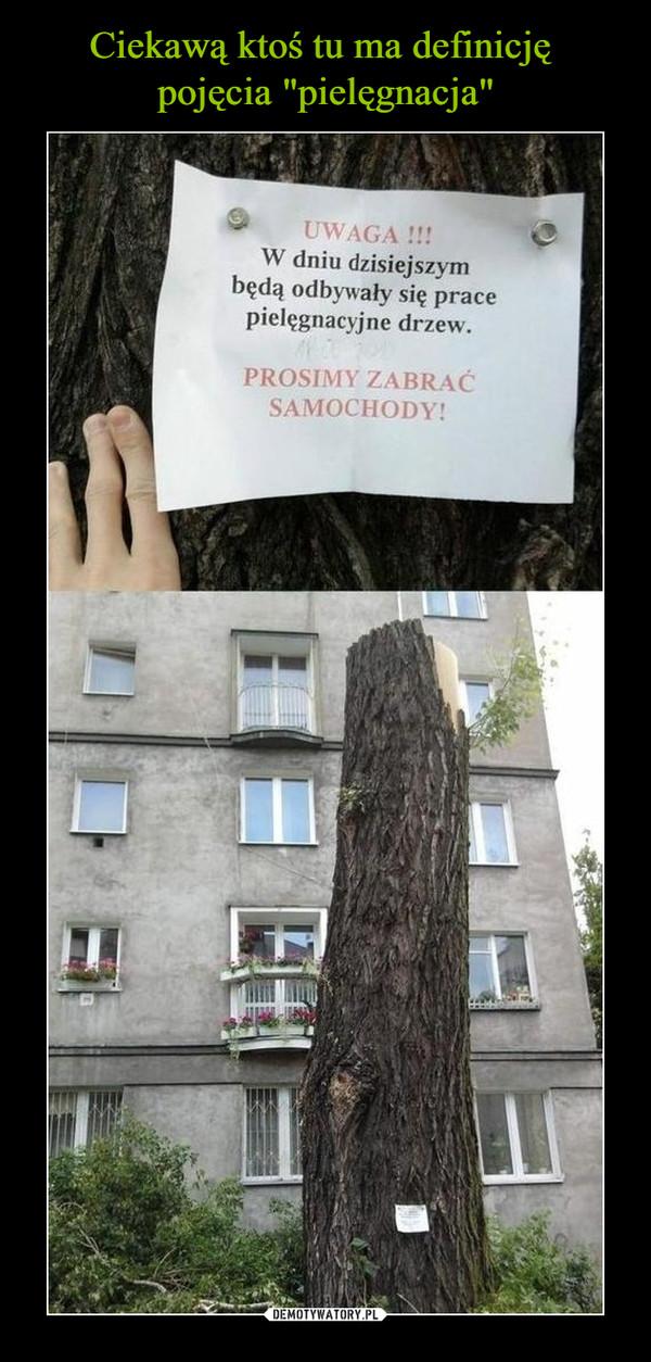 –  UWAGA !! W dniu dzisiejszym będą odbywały się prace pielęgnacyjne drzew. PROSIMY ZABRAĆ SAMOCHODY!