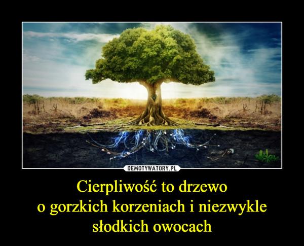 Cierpliwość to drzewoo gorzkich korzeniach i niezwykle słodkich owocach –