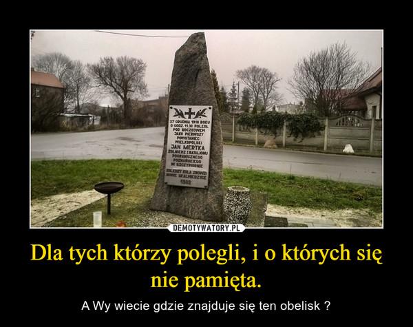 Dla tych którzy polegli, i o których się nie pamięta. – A Wy wiecie gdzie znajduje się ten obelisk ?