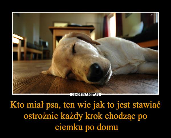 Kto miał psa, ten wie jak to jest stawiać ostrożnie każdy krok chodząc po ciemku po domu –