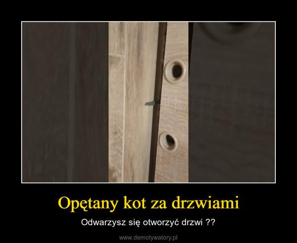 Opętany kot za drzwiami – Odwarzysz się otworzyć drzwi ??