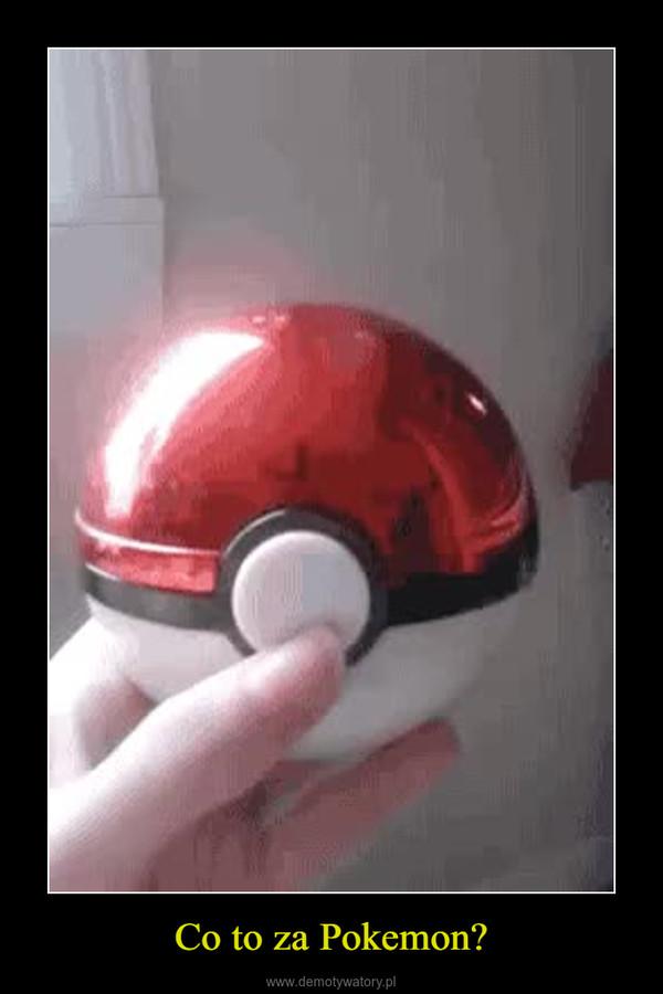 Co to za Pokemon? –