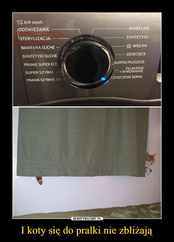 I koty się do pralki nie zbliżają –