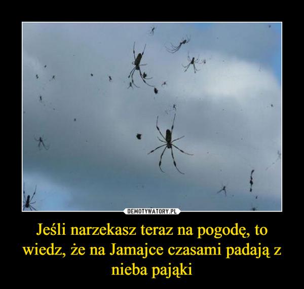 Jeśli narzekasz teraz na pogodę, to wiedz, że na Jamajce czasami padają z nieba pająki –
