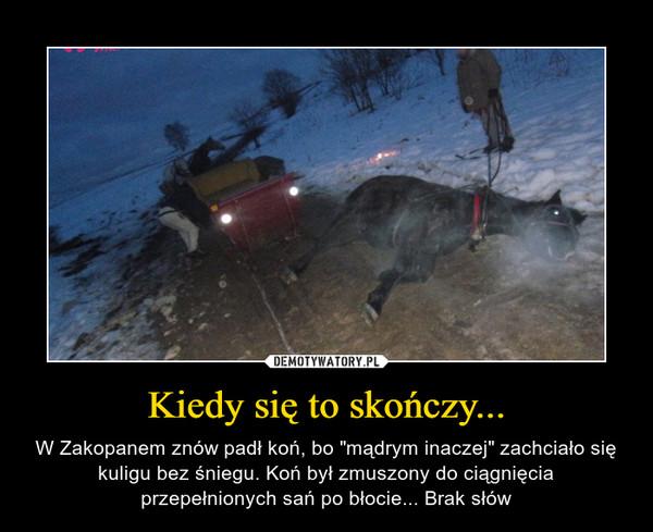 """Kiedy się to skończy... – W Zakopanem znów padł koń, bo """"mądrym inaczej"""" zachciało się kuligu bez śniegu. Koń był zmuszony do ciągnięcia przepełnionych sań po błocie... Brak słów"""