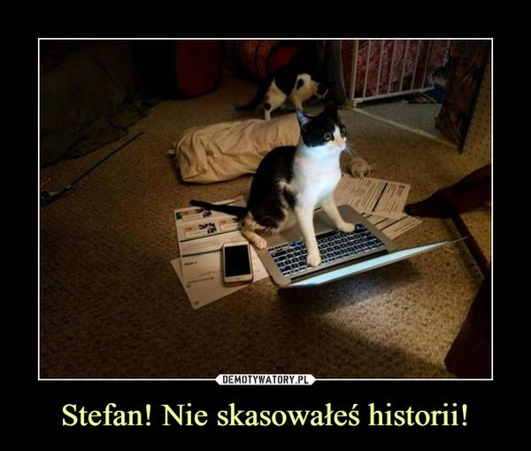Stefan! Nie skasowałeś historii! –