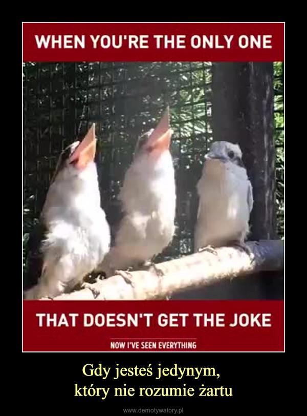 Gdy jesteś jedynym, który nie rozumie żartu –
