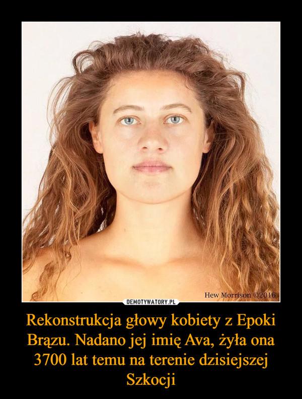 Rekonstrukcja głowy kobiety z Epoki Brązu. Nadano jej imię Ava, żyła ona 3700 lat temu na terenie dzisiejszej Szkocji –