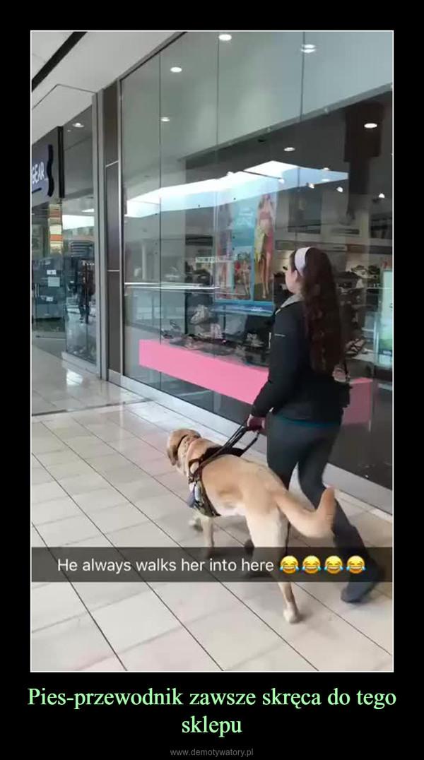 Pies-przewodnik zawsze skręca do tego sklepu –