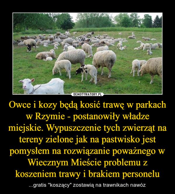 """Owce i kozy będą kosić trawę w parkach w Rzymie - postanowiły władze miejskie. Wypuszczenie tych zwierząt na tereny zielone jak na pastwisko jest pomysłem na rozwiązanie poważnego w Wiecznym Mieście problemu z koszeniem trawy i brakiem personelu – ...gratis ''koszący"""" zostawią na trawnikach nawóz"""