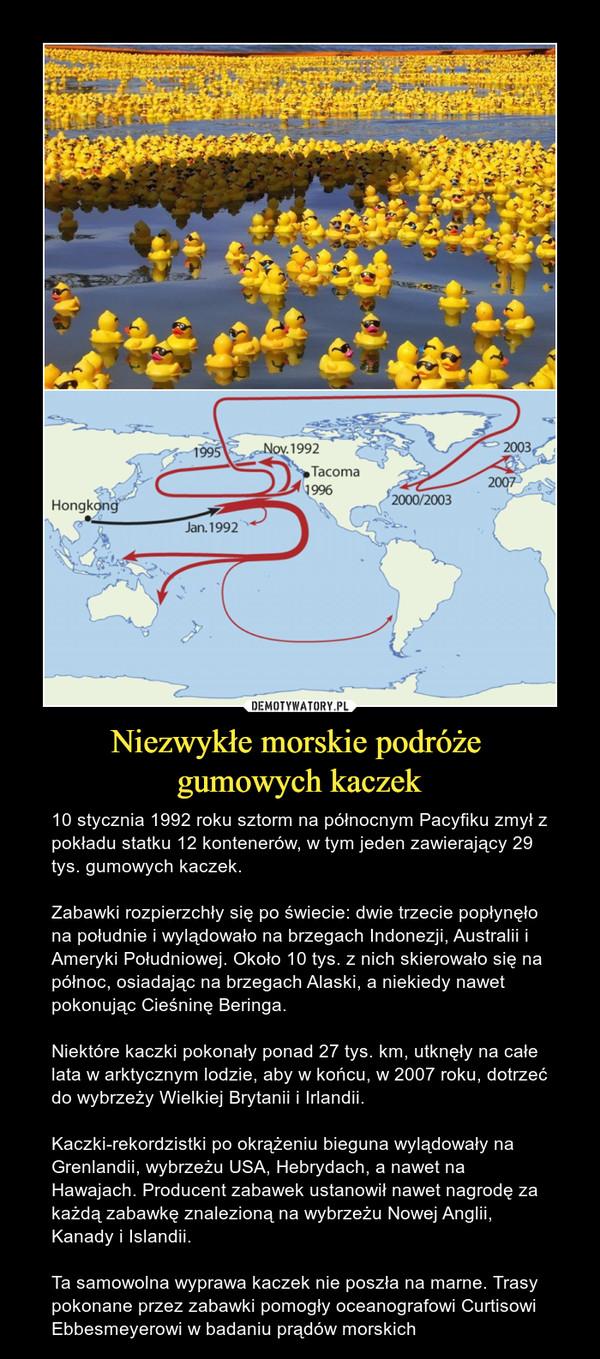 Niezwykłe morskie podróże gumowych kaczek – 10 stycznia 1992 roku sztorm na północnym Pacyfiku zmył z pokładu statku 12 kontenerów, w tym jeden zawierający 29 tys. gumowych kaczek.Zabawki rozpierzchły się po świecie: dwie trzecie popłynęło na południe i wylądowało na brzegach Indonezji, Australii i Ameryki Południowej. Około 10 tys. z nich skierowało się na północ, osiadając na brzegach Alaski, a niekiedy nawet pokonując Cieśninę Beringa.Niektóre kaczki pokonały ponad 27 tys. km, utknęły na całe lata w arktycznym lodzie, aby w końcu, w 2007 roku, dotrzeć do wybrzeży Wielkiej Brytanii i Irlandii.Kaczki-rekordzistki po okrążeniu bieguna wylądowały na Grenlandii, wybrzeżu USA, Hebrydach, a nawet na Hawajach. Producent zabawek ustanowił nawet nagrodę za każdą zabawkę znalezioną na wybrzeżu Nowej Anglii, Kanady i Islandii.Ta samowolna wyprawa kaczek nie poszła na marne. Trasy pokonane przez zabawki pomogły oceanografowi Curtisowi Ebbesmeyerowi w badaniu prądów morskich