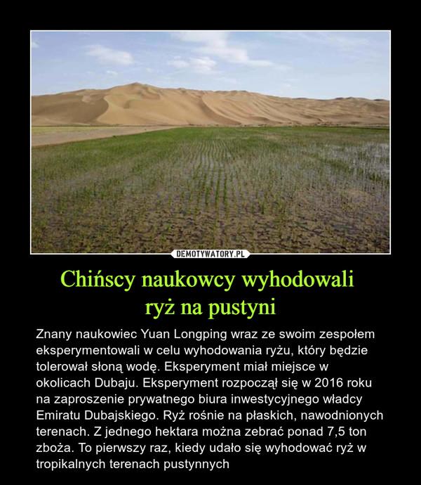 Chińscy naukowcy wyhodowali ryż na pustyni – Znany naukowiec Yuan Longping wraz ze swoim zespołem eksperymentowali w celu wyhodowania ryżu, który będzie tolerował słoną wodę. Eksperyment miał miejsce w okolicach Dubaju. Eksperyment rozpoczął się w 2016 roku na zaproszenie prywatnego biura inwestycyjnego władcy Emiratu Dubajskiego. Ryż rośnie na płaskich, nawodnionych terenach. Z jednego hektara można zebrać ponad 7,5 ton zboża. To pierwszy raz, kiedy udało się wyhodować ryż w tropikalnych terenach pustynnych