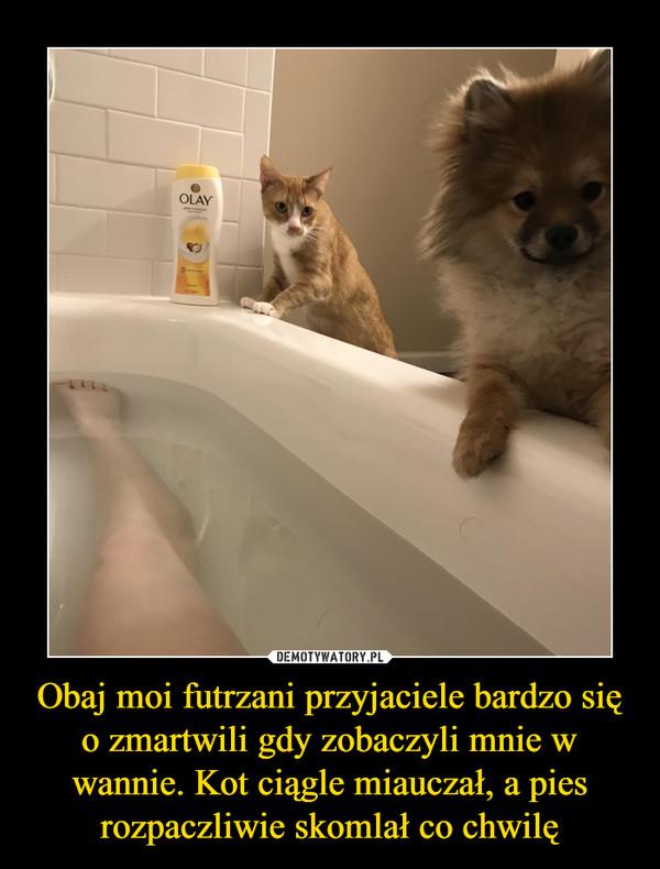 Obaj moi futrzani przyjaciele bardzo się o zmartwili gdy zobaczyli mnie w wannie. Kot ciągle miauczał, a pies rozpaczliwie skomlał co chwilę –