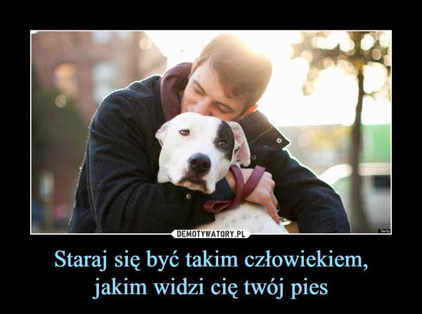 Staraj się być takim człowiekiem,jakim widzi cię twój pies –