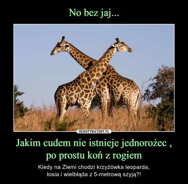 Jakim cudem nie istnieje jednorożec ,po prostu koń z rogiem – Kiedy na Ziemi chodzi krzyżówka leoparda,łosia i wielbłąda z 5-metrową szyją?!