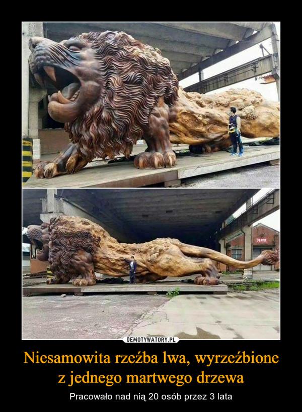 Niesamowita rzeźba lwa, wyrzeźbionez jednego martwego drzewa – Pracowało nad nią 20 osób przez 3 lata