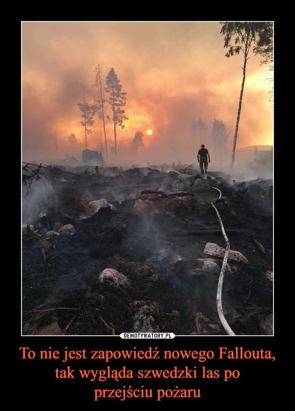 To nie jest zapowiedź nowego Fallouta, tak wygląda szwedzki las poprzejściu pożaru –