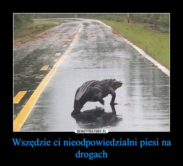 Wszędzie ci nieodpowiedzialni piesi na drogach –