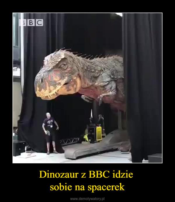 Dinozaur z BBC idzie sobie na spacerek –