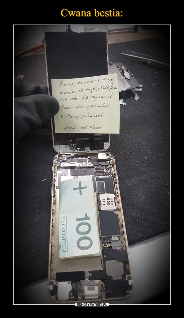 –  proszę powiedzieć mojej żonie że mojego telefonu nie da się naprawić żona chce sprawdzić historię połączeń 100 zł jest wasze