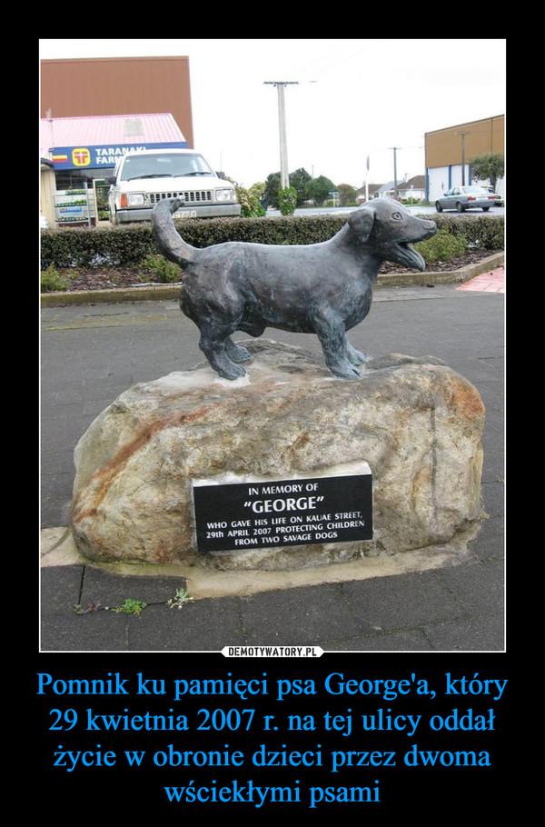 Pomnik ku pamięci psa George'a, który 29 kwietnia 2007 r. na tej ulicy oddał życie w obronie dzieci przez dwoma wściekłymi psami –