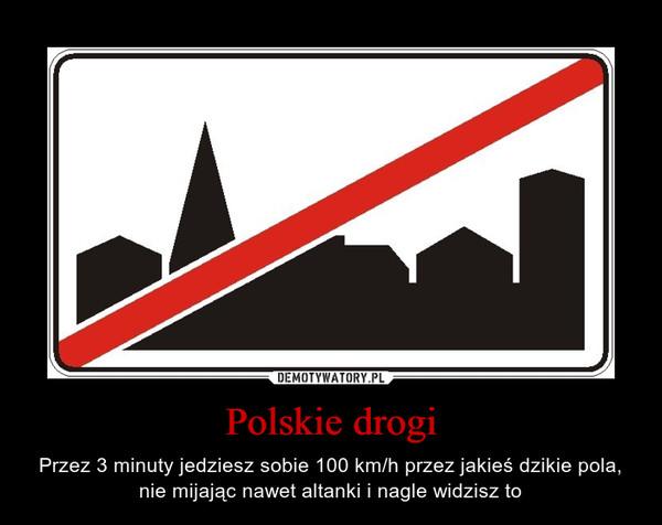 Polskie drogi – Przez 3 minuty jedziesz sobie 100 km/h przez jakieś dzikie pola, nie mijając nawet altanki i nagle widzisz to