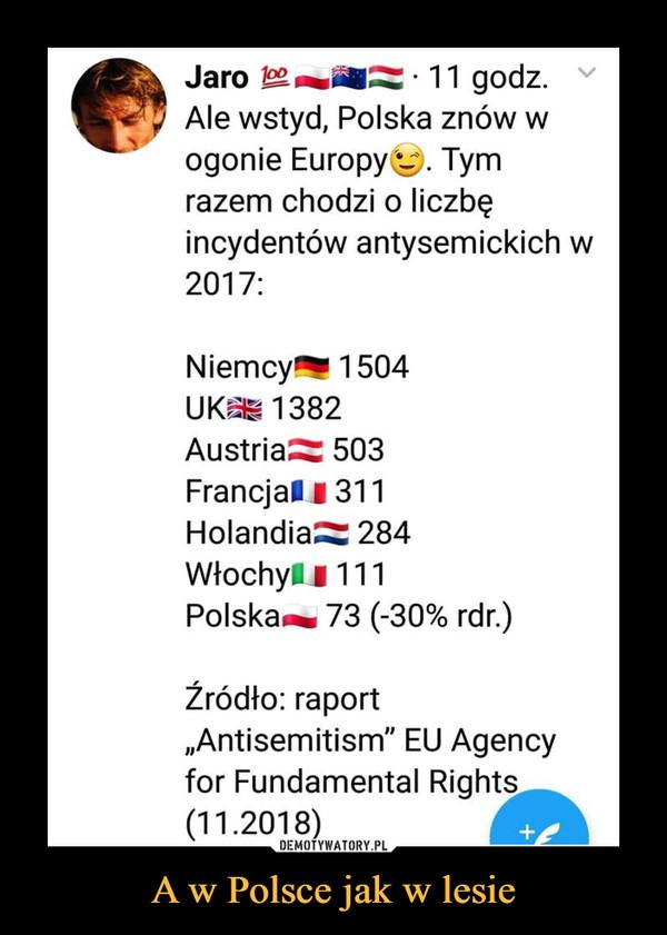 """A w Polsce jak w lesie –  Jaro oo11 godz. vAle wstyd, Polska znów wogonie Europy. Tymrazem chodzi o liczbęincydentów antysemickich w2017Niemcy1504UK 1382Austria 503FrancjalI311Holandia 284WłochyI 111Polska~ 73 (-30% rdr)źródło: raport,Antisemitism"""" EU Agencyfor Fundamental Rights(11.2018)"""