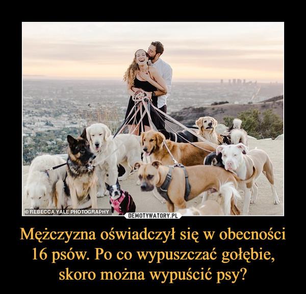 Mężczyzna oświadczył się w obecności 16 psów. Po co wypuszczać gołębie, skoro można wypuścić psy? –
