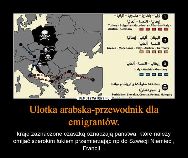 Ulotka arabska-przewodnik dla emigrantów. – kraje zaznaczone czaszką oznaczają państwa, które należy omijać szerokim łukiem przemierzając np do Szwecji Niemiec , Francji  .
