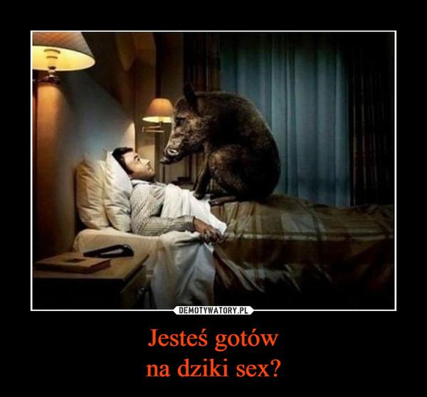 Jesteś gotówna dziki sex? –