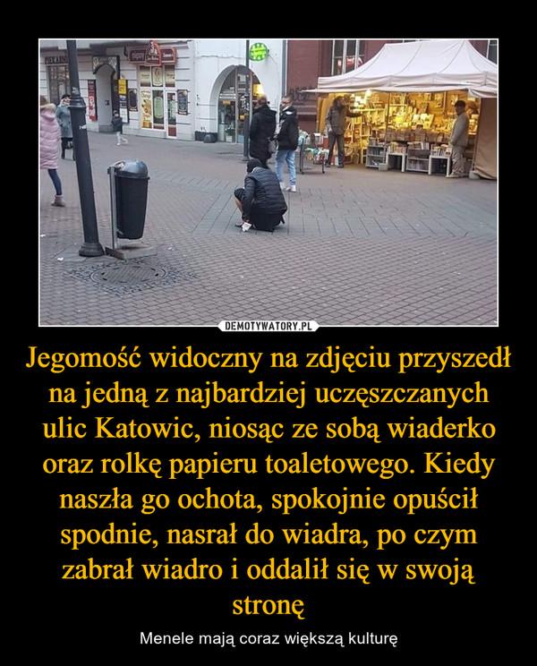 Jegomość widoczny na zdjęciu przyszedł na jedną z najbardziej uczęszczanych ulic Katowic, niosąc ze sobą wiaderko oraz rolkę papieru toaletowego. Kiedy naszła go ochota, spokojnie opuścił spodnie, nasrał do wiadra, po czym zabrał wiadro i oddalił się w swoją stronę – Menele mają coraz większą kulturę