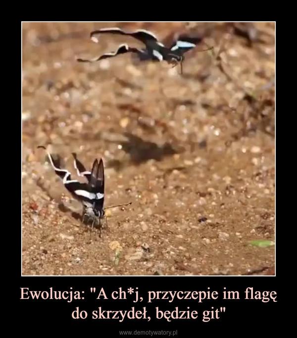 """Ewolucja: """"A ch*j, przyczepie im flagę do skrzydeł, będzie git"""" –"""