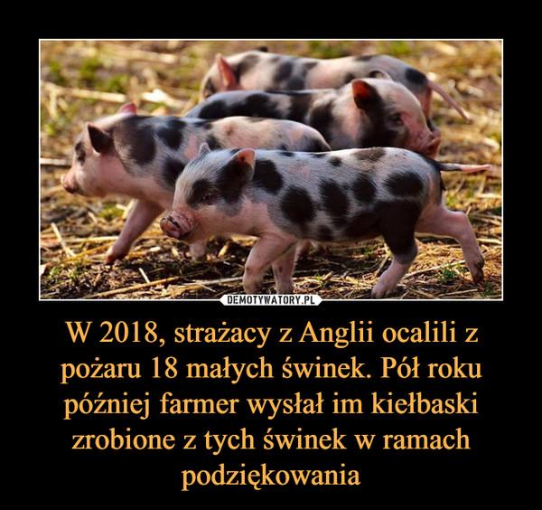 W 2018, strażacy z Anglii ocalili z pożaru 18 małych świnek. Pół roku później farmer wysłał im kiełbaski zrobione z tych świnek w ramach podziękowania –